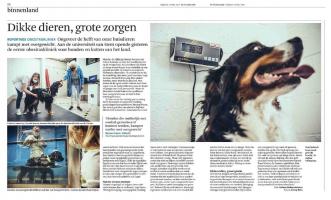 Nieuwe obesitaskliniek voor honden en katten