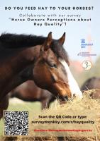Geeft u hooi aan uw paard?